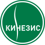 Логотип кинезис